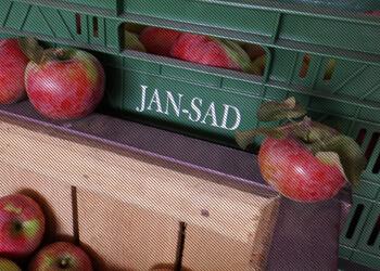 Jan-SAD
